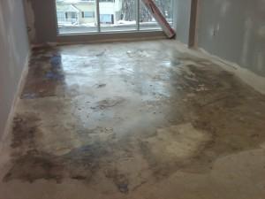 Levelling Floors